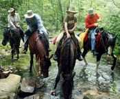 Horseback Trails