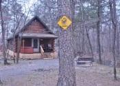 wolf-cabin-1