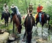 Horseback Trails